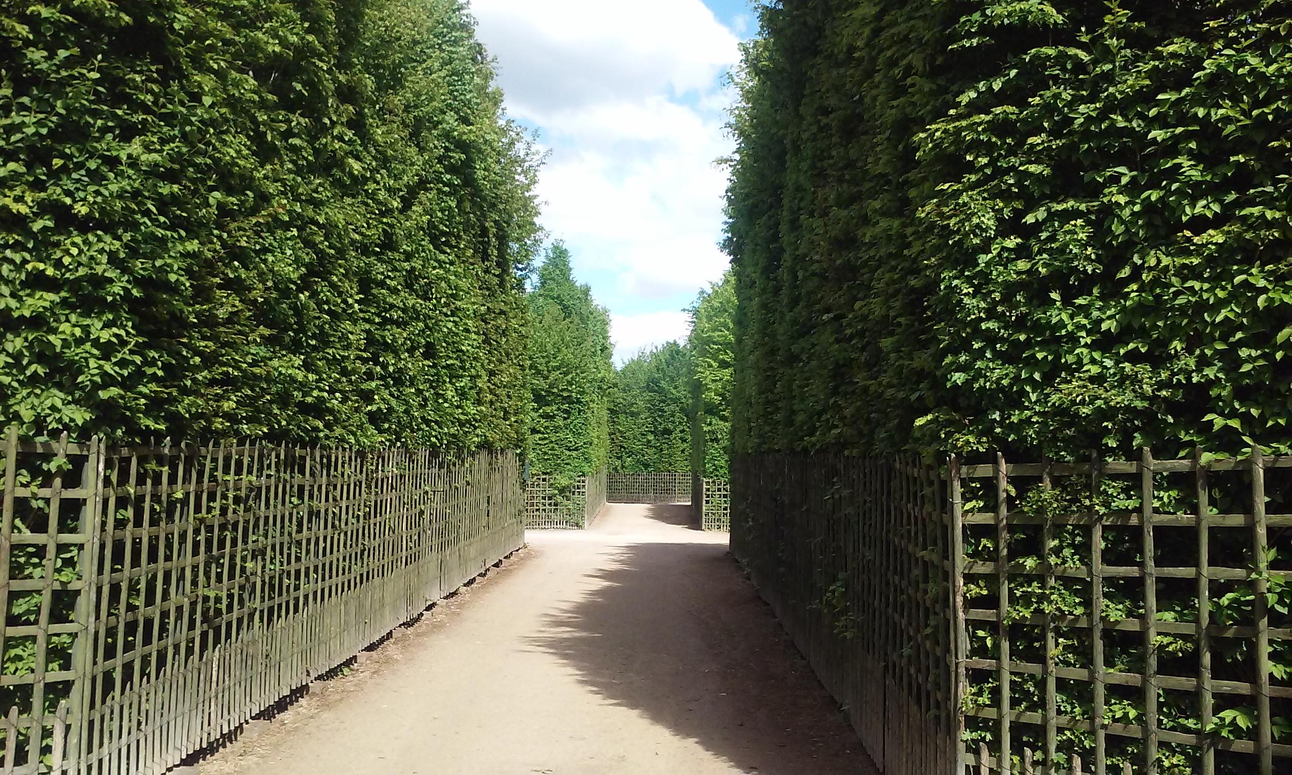 Bosquet du Dauphin at the Versailles Gardens. A short regional rail ride from Paris, Franc