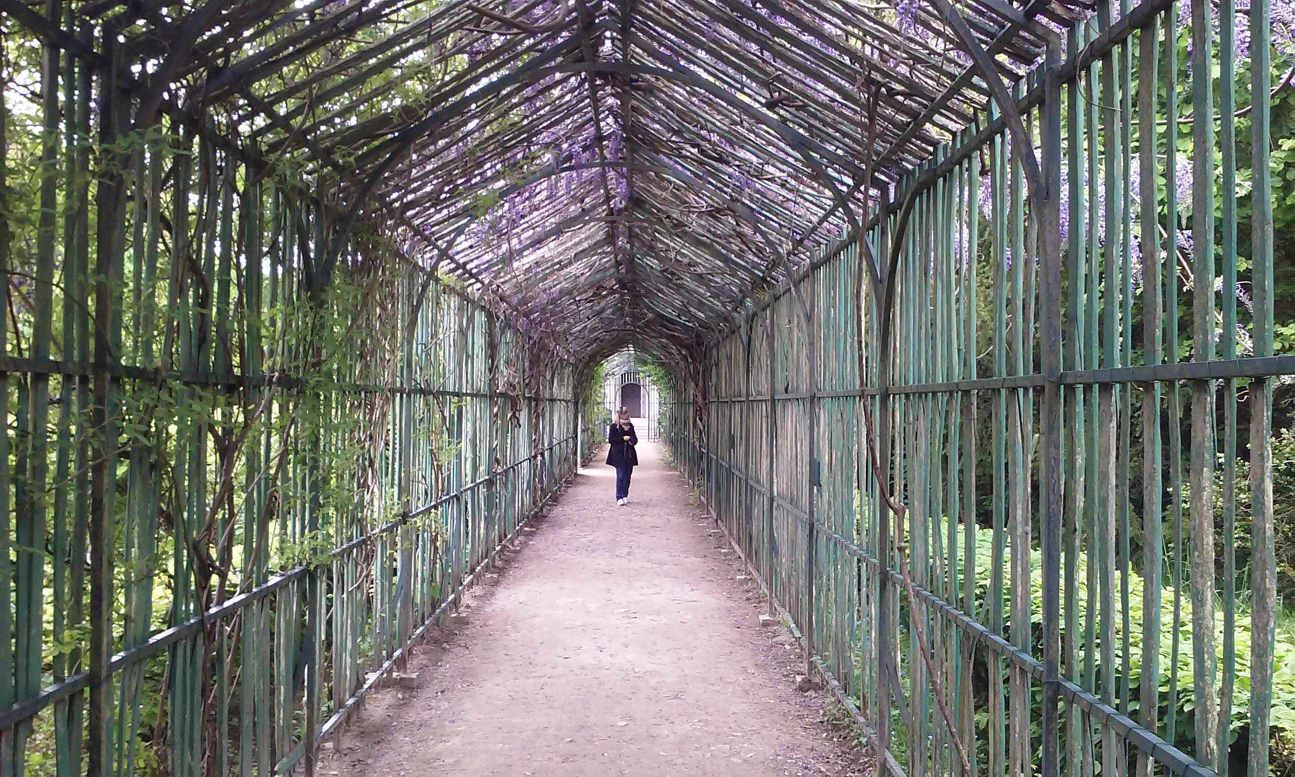 One of the paths through the gardens of Versailles. This covered pathway leads to the Quee